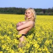 Stock Photo: Beautiful young blonde woman in a field of wildflowers.